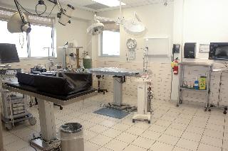 Carling Animal Hospital - Photo 3