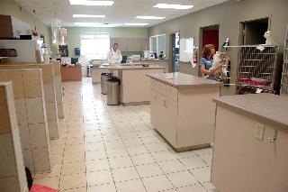 Carling Animal Hospital - Photo 8