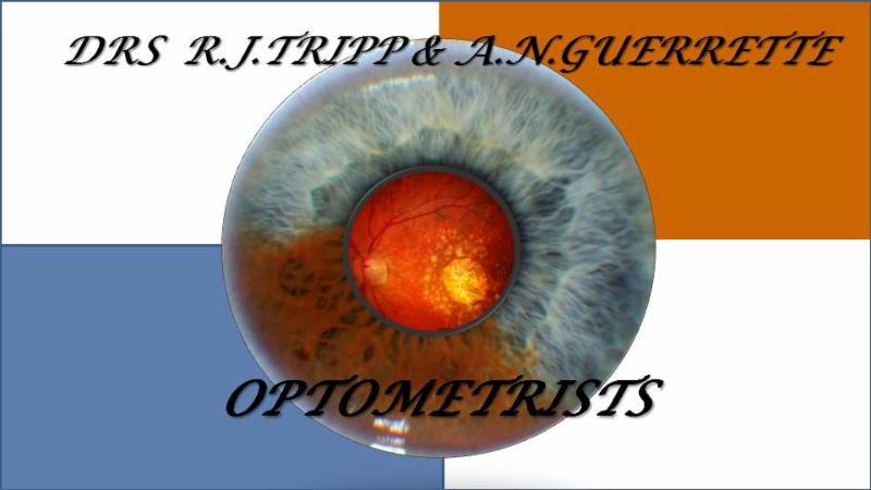 Dr. R. James Tripp & Dr. A. Nadine Guerrette - Photo 3
