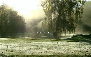 Carleton Golf & Yacht Club - Photo 3