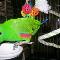 Noah's Ark Pets & Supplies Ltd - Pet Grooming, Clipping, & Washing - 780-939-2528