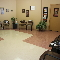 Hôpital Vétérinaire De L'Ile-Perrot Inc - Cliniques - 514-453-3406