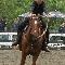 Ecole D'Équitation André Vanier - Centres équestres - 418-338-2428