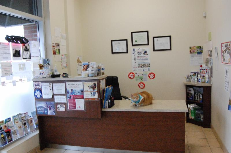 Derry Heights Animal Hospital - Photo 5