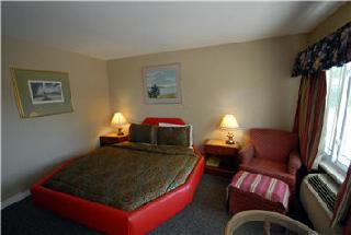 Kitchener Motel - Photo 7