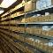 Hitchon's PumpHouse - Hot Tubs & Spas - 705-745-0007