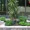 Jardin de Pierre - Paysagistes & aménagement extérieur - 819-446-4208
