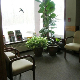 View Altima Pelham Ridge Dental Centre's Casselman profile