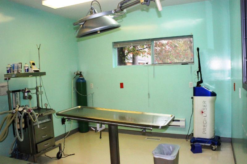 Hôpital Vétérinaire Rive Nord Enr - Photo 5