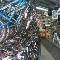 Desaulniers Jacques - Magasins de vélos - 418-365-5854