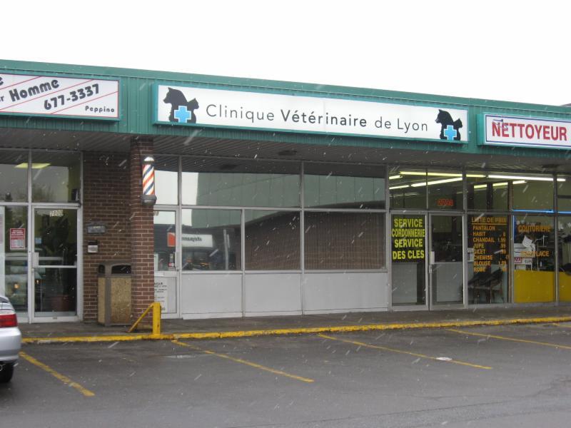 Clinique Vétérinaire de Lyon - Photo 1