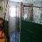 Garderie D'Animaux Amimax - Toilettage et tonte d'animaux domestiques - 418-668-4917