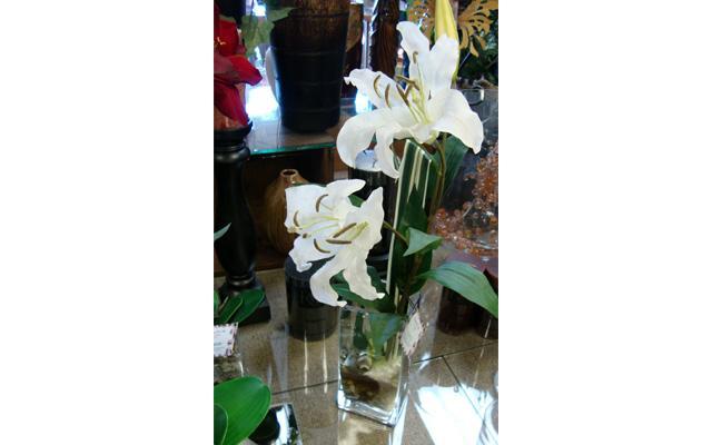 Whitehorse Flowers Etc - Photo 8