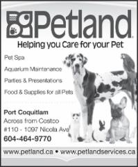 Petland - Photo 7