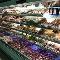 Briwood Farm Market Inc - Farmers Markets - 519-633-9691