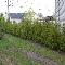 Belles Saisons L C Enr - Paysagistes et aménagement extérieur - 450-662-0880