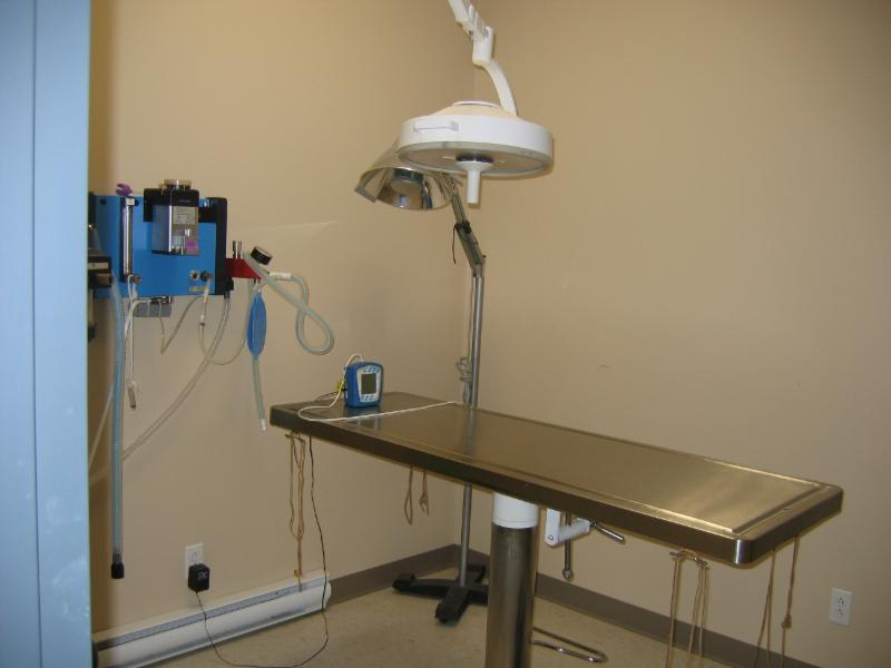 Clinique Vétérinaire de Beaumont - Photo 10