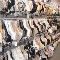 Legs Plus Inc & Bra Boutique - Lingerie Stores - 416-497-2350