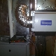 photo ASAP Heating & Cooling Ltd