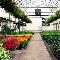 Horlings Garden Centre Ltd - Landscape Contractors & Designers - 705-652-7979