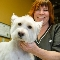 Vicki's Paw Spa - Pet Grooming, Clipping, & Washing - 604-534-1477