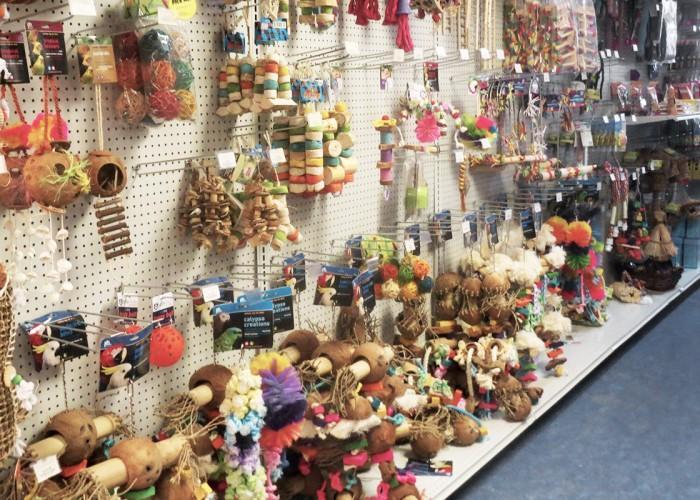 Paradise Pet Centre - Photo 4