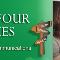Voir le profil de Carrefour des Langues - Québec