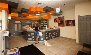 Clinique Vétérinaire Hamel - Photo 6