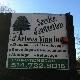 Service d'Entretien d'Arbres Viau Inc - Service d'entretien d'arbres - 514-722-8016