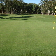 Landings Of Willow Creek Golf Course - Public Golf Courses - 705-721-7908