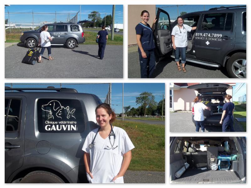 Clinique Vétérinaire Gauvin - Photo 9