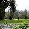 View Cultus Lake Golf Club's Surrey profile