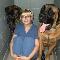 Granville Island Veterinary Hospital - Veterinarians - 604-734-7744