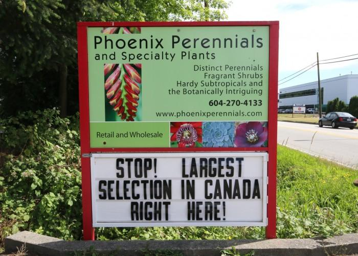 Phoenix Perennials & Specialty Plants - Photo 4
