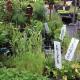 Baltimore Valley Produce & Garden Centre - Landscape Contractors & Designers - 905-372-2662