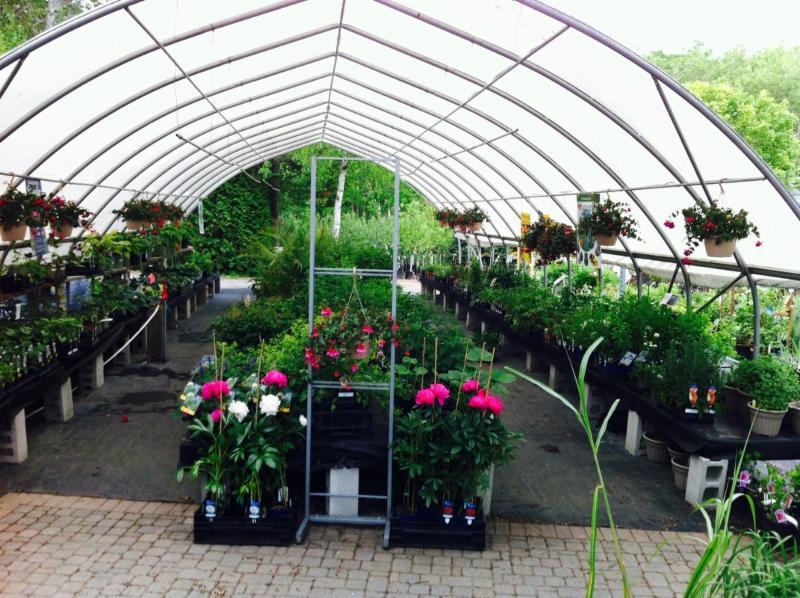 Baltimore Valley Produce & Garden Centre - Photo 9