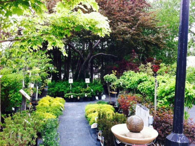 Baltimore Valley Produce & Garden Centre - Photo 2