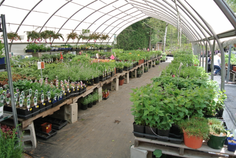 Baltimore Valley Produce & Garden Centre - Photo 1