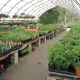 Baltimore Valley Produce & Garden Centre - Fruit & Vegetable Stores - 905-372-2662