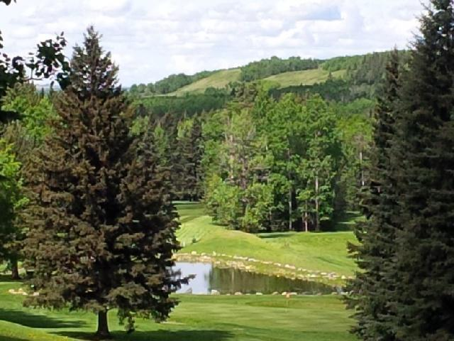 Spirit Creek Golf & Country Club - Photo 1