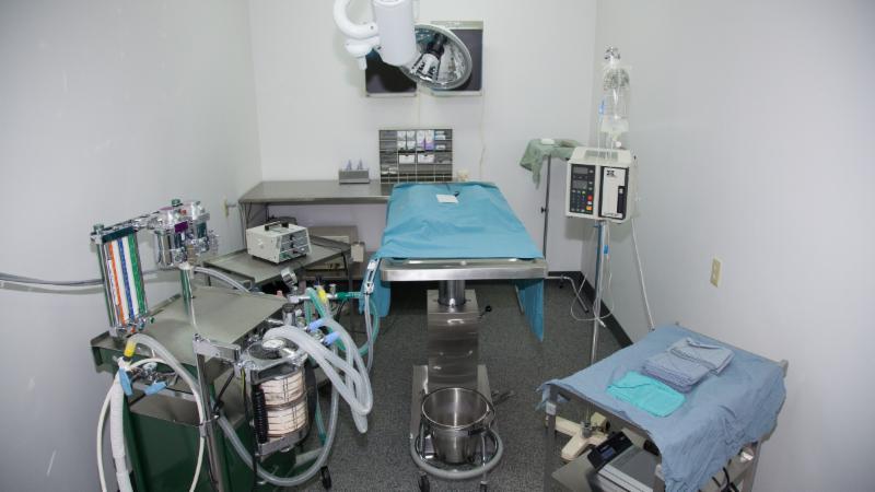 Woodgrove Animal Hospital - Photo 9