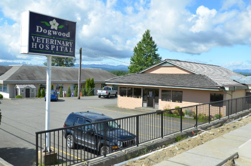 Dogwood Veterinary Hospital Ltd - Photo 1