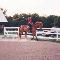 Reschburl Esquestrian Centre - Stables - 905-319-0451