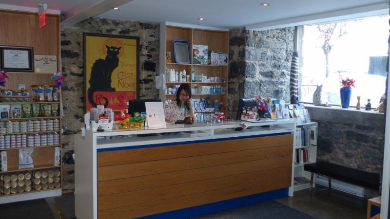 Chats Montréal-Clinique Vétérinaire Pour Chats - Photo 3
