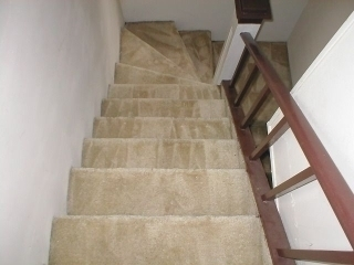 Full Steam Carpet & Upholstery Care - Photo 9