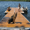 Docks By Design - Docks & Dock Builders - 705-478-6555