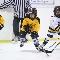 Burlington Pond H T C - Hockey Lessons & Schools - 905-631-9061