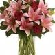 Beaconsfield Flora - 514-694-1648
