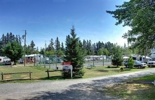 Camping Québec - Photo 8