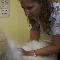 Clinique Vétérinaire St-Grégoire - Magasins d'accessoires et de nourriture pour animaux - 819-233-2020